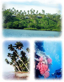 Fiji beaches, snorkeling or swimming